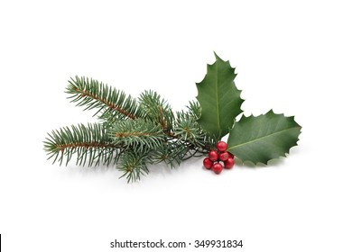 Christmas decoration of holly berry and pine tree