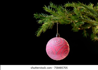 Christmas decoration. Pink ball on Christmas tree branch. Black background.