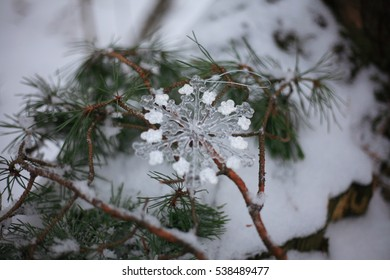 Christmas decoration. Snowflake on a pine branch.