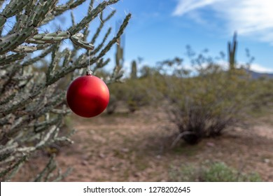 Christmas Tree In The Desert.Christmas Tree In Desert Stock Photos Images Photography