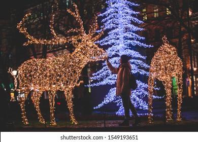 Weihnachtsdekorationen in den historischen Hauptstraßen von Helsinki, mit Abendlicht Beleuchtung, Weihnachtskonzept in Finnland, mit Kathedrale, Marktplatz, Weihnachtsbaum