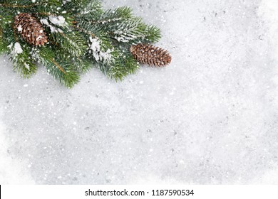Christmas fir tree branch covered by snow on stone background. Top view xmas backdrop with space for your greetings