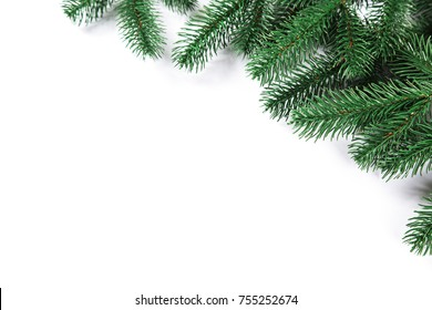 Christmas fir tree frame on white background. Free space