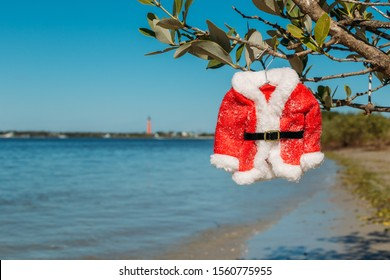 Christmas in Florida concept.  Santa suit hangs on a mangrove in ponce inlet of New Smyrna Beach, Florida.  The historic lighthouse in the bcakground.