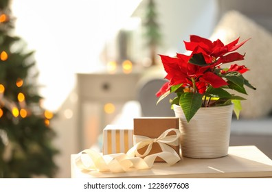 Christmas flower poinsettia with gift boxes on light table