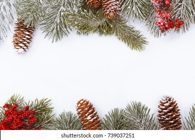 Christmas frame border on white background, evergreen branches, fir cones and red berries.