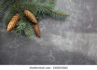 Christmas frame on the background of the Christmas tree, New Year theme.