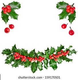 christmas garland of european holly Ilex isolated on white background