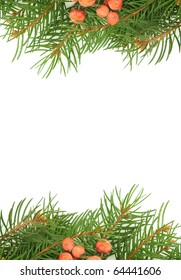 Christmas green framework and  holly berry  isolated on white background