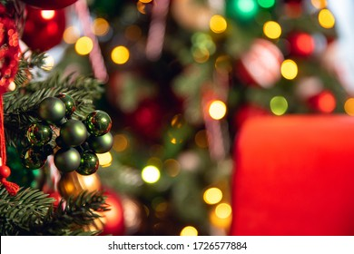 Christmas green pine tree with background bokeh light.