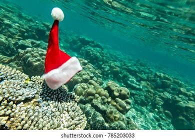 Christmas hat is underwater (he did exist)
