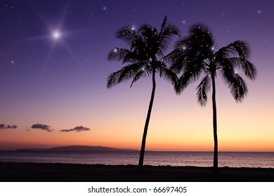 Christmas in Hawaii with Palm Trees and Stars