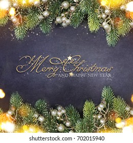 Christmas holiday background with fir branch