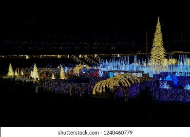 Christmas Holiday Season Lights