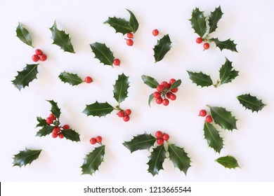 Christmas holly with red berries. Traditional festive decoration. Holly branch with red berries on white table background. Flat lay, top view.