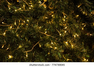 christmas light decorate on tree for background