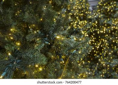 Christmas lights background closeup