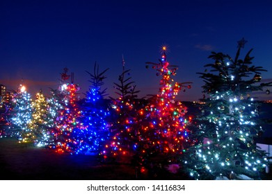 Christmas lights by Dundarave Beach at sunset, West Vancouver,Canada