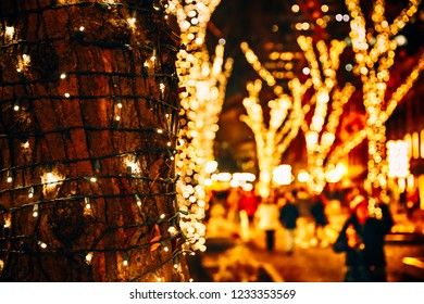 Christmas lights on the tree trunk, closeup. blurred background city street with Christmas illuminations. Christmas lights on the tree. Copy space for your text