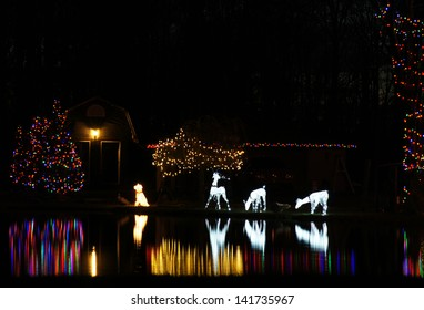 Christmas lights are reflected in the pond