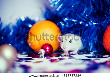 christmas little white mice in new year decorations selective focus