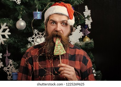 christmas man with beard on happy face lick lollipop candy, new year holiday and party celebration, santa claus at xmas, blowjob