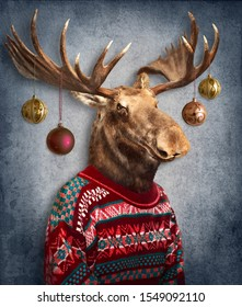 Christmas moose with Christmas balls hanging on antlers. Concept graphic, photo manipulation for cover, christmas card, advertising, prints on clothing and other.