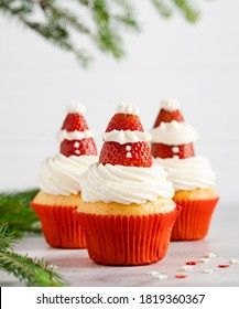 Christmas muffins with strawberry creamy frosting (Santa hat shaped) and green fir tree branches. Vanilla cupcakes, winter and new year dessert. Christmas celebration, grey concrete background.
