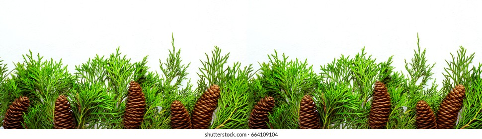 Christmas natural Border of coniferous branches and cones. Banner format