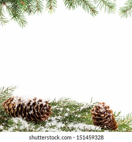 christmas ornament background with fir branches, white background