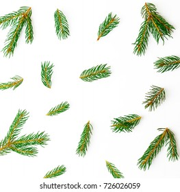 Christmas pattern of green branches on white background, winter flat lay concept