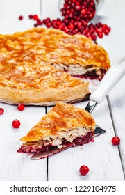 Christmas pie with turkey and cranberry. Close up