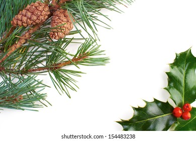 A Christmas pine tree branch, cone and holly on a white background.