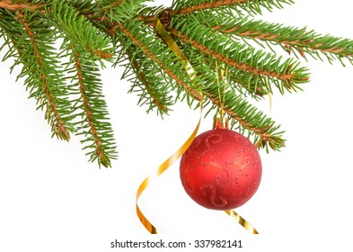 christmas red ball on the green branch