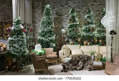 Christmas room with fir-trees