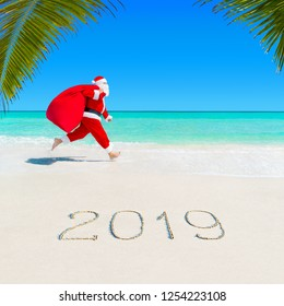 Christmas Santa Claus run at ocean tropical sandy palm beach with large sack full of gifts - season 2019 New Year vacation and travel agencies price discounts concept