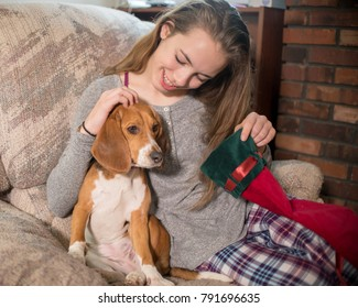 Christmas scene with a teenage girl wearing pajamas and a young beagle.