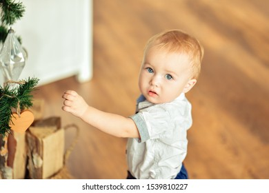 Christmas. A small blond boy reaches for a Christmas toy and looks at the camera