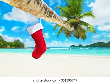 Christmas sock on palm tree at exotic tropical beach. Holiday concept for New Year Cards and travel destinations by hot tours