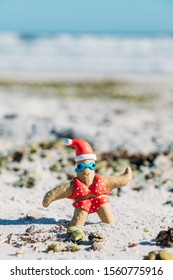 Christmas themed starfish on the white sands of New Smyrna Beach, Florida.