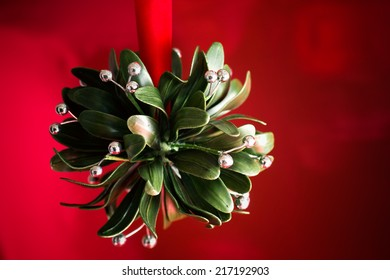 A Christmas tradition. A ball of artificial mistletoe against a red background.
