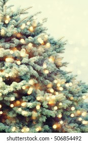Christmas tree background.