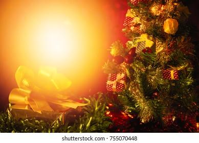 Christmas tree background and sunset light