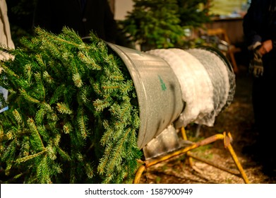 A Christmas tree to be packed in a market place with a machine for transportation.