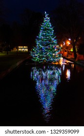 Christmas tree in Bourton on the Water (England)
