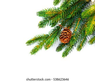 Christmas Tree with Cones border isolated on a White background. New Year holiday evergreen tree, Xmas green border design