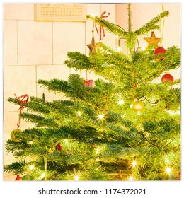 christmas tree, with copy-space