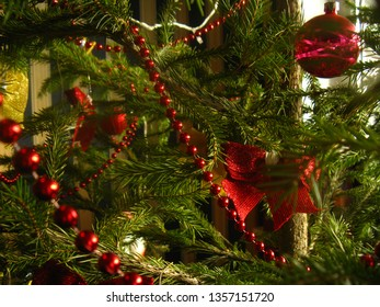 The Christmas tree is decorated with red beads, bows and glass balls. Beautiful elegant Christmas tree glitters and shimmers in natural sunlight.