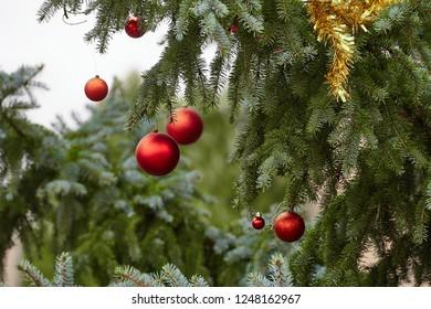 Christmas tree decoration close up