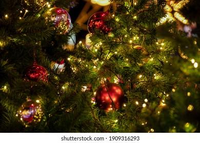 Christmas tree and Christmas decorations.